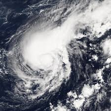 Hurricanes and Food Safety